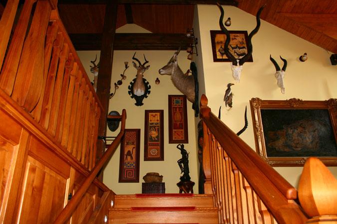 Krásné lovecké trofeje, slouží jako výjimečná dekorace a krásná kulisa pro ubytované hosty.
